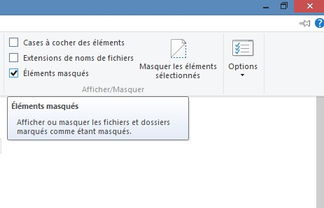 afficher-fichier-dossier-cache-windows