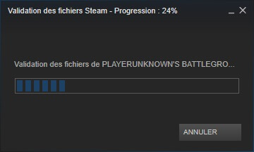Validation des fichiers du jeu Steam
