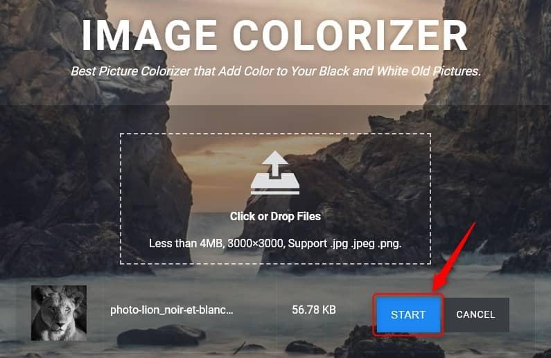 Coloriser une photo en noir et blanc avec Image Colorizer