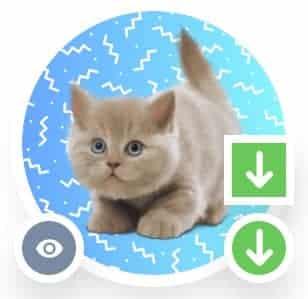 Générateur de photo de profil gratuit