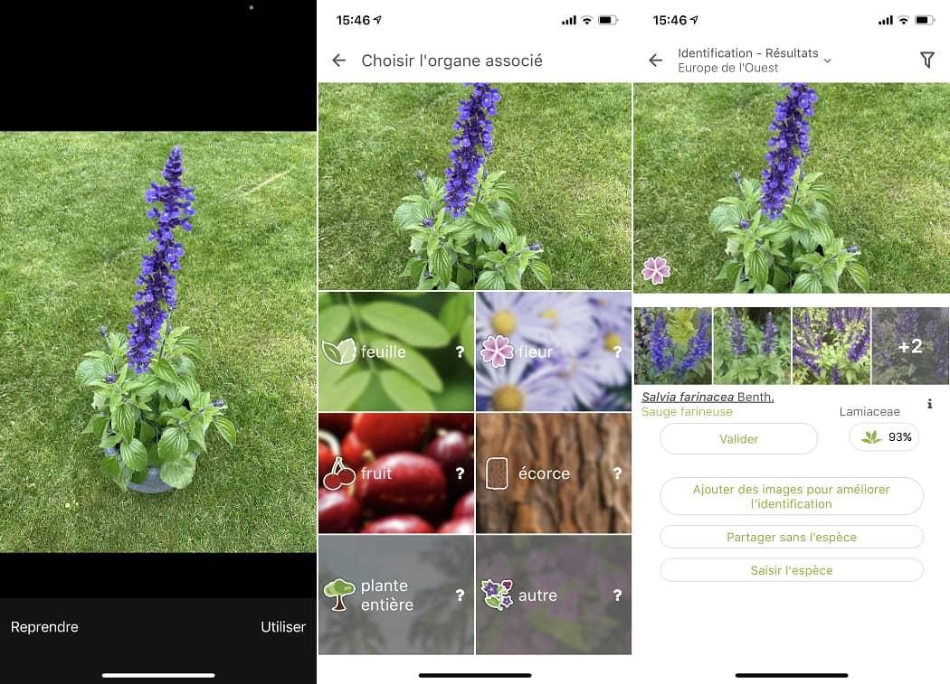 Interface de l'application PlantNet