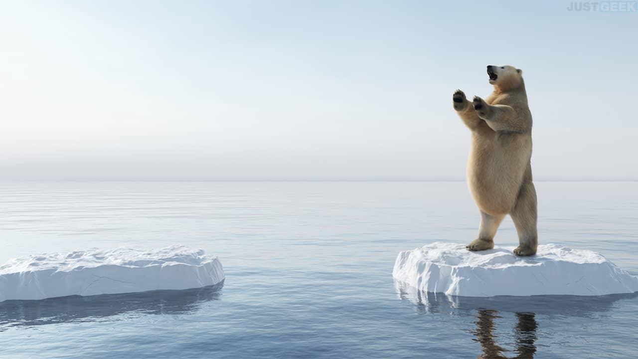 Un ours polaire posé sur une banquise